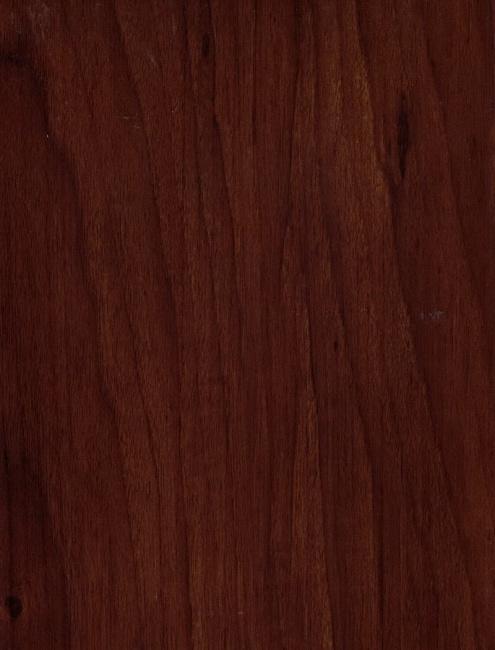 American Walnut 161211