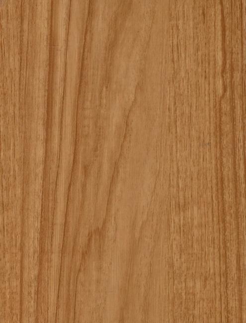 Oak 11053