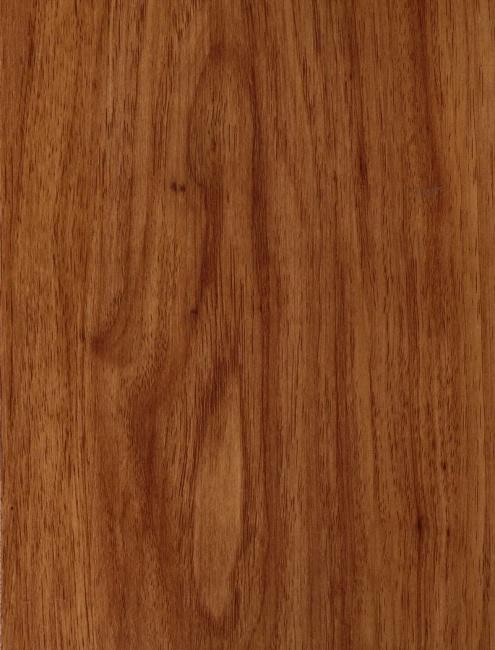Pecan Honey 60912