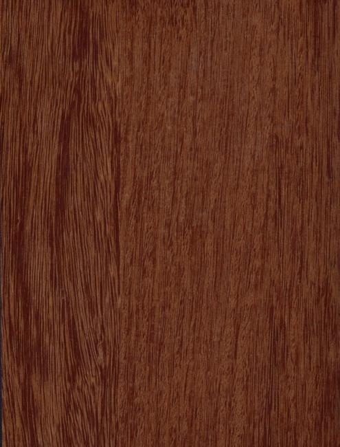 Quarter Oak Medium 62004