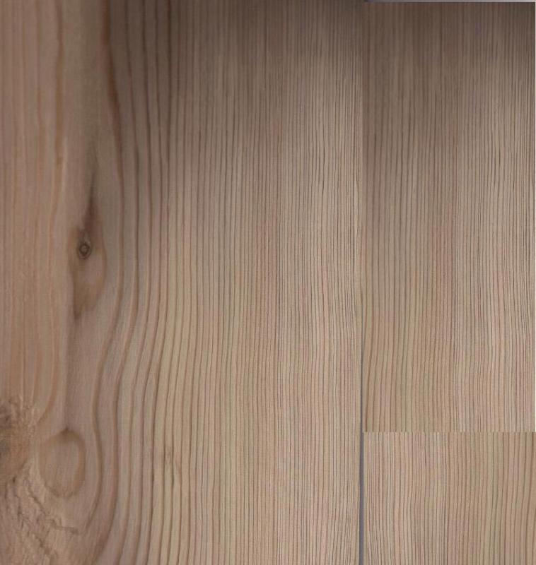 White Pine 53913