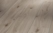 Дуб серый V4 1475600