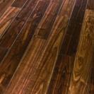 Орех лесной 1-пол 1473829 V4
