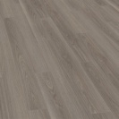 530343 Дуб античный серый V4 1х